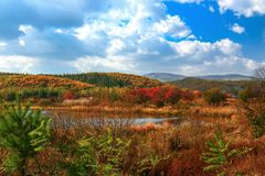 Early autum scenery at Jingpo lake world geological park 3. Every year from mid-September to early October is the optimal period for appreciating autum scene in Royalty Free Stock Images