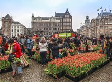 Tulip Bulb festival on the Dam in Amsterdam stock photography