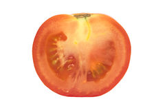 Everyday tomato Royalty Free Stock Photography