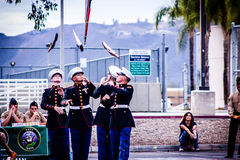Everyone Look Up. MJROTC Cadets throwing their rifles in competition Stock Photo