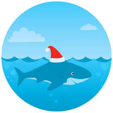 Everyone loves Christmas even sharks! Stock Photo