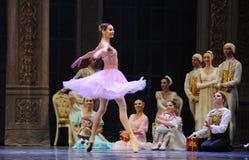 Everyone loves Clara-The Ballet  Nutcracker Royalty Free Stock Image