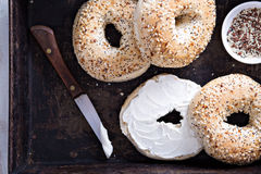 Everything bagels with cream cheese Royalty Free Stock Photos