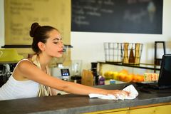 Everything should be perfect. Barista clean counter top in bar. Woman barista in coffee shop. Pretty woman stand behind. Cafe counter. Adorable young bartender stock photography