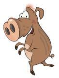 Everzwijnbeeldverhaal Stock Foto's