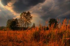 evevning солнечный Стоковые Изображения RF