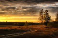 evevning fält över Royaltyfri Fotografi