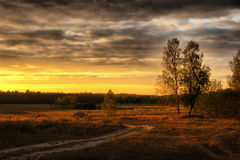 Evevning over field. The road through field. Autumn landscape. Russia royalty free stock photography