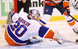 Evgeni Nabokov New York Islanders Stock Photography