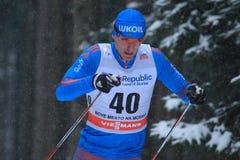 Evgeniy Belov - corta-mato Foto de Stock Royalty Free
