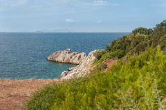 Evia wyspy wybrzeże Fotografia Royalty Free
