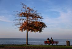 Evian autumn. Autumn in Evian.Near the Leman lake during sunset Royalty Free Stock Images
