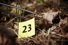 Evidence of cartridge on place of crime Royalty Free Stock Photography
