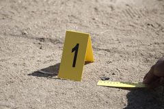 Evidence marker and ruler scale of evidence with law enforcemen. T hand background stock images