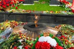 Evig flamma - med blommor royaltyfri bild