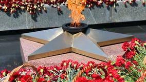 Evig flamma och blommor i minnet av segern arkivfilmer