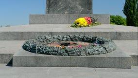 Evig flammacloseup, minnesmärke till den okända soldaten i Kiev, Ukraina, lager videofilmer
