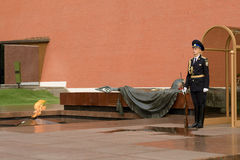 evig flammaguardheder Royaltyfri Foto