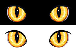 Evil Animal Eyes. Set of evil animal eyes. Isolated on black and white backgrounds. Vector file saved as EPS AI8, all elements layered and grouped, no effects Royalty Free Stock Photography
