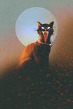 Evil cat on a background of the moon Stock Images