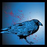 Evil Crow stock photo