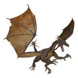 Evil Dragon Royalty Free Stock Photo