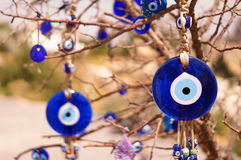 Evil eye bad on tree Royalty Free Stock Photos