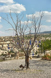 Evil eye in tree behind Love valley in Goreme national park. Cappadocia Royalty Free Stock Photo