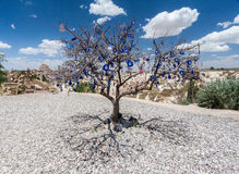 Evil Eye Tree Cappadocia Turkey Royalty Free Stock Photography