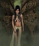 Evil fairy Stock Photos