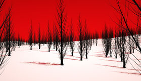 Evil forest. An evil forest featuring dead black trees and red sky Stock Image