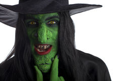 Evil green witch. Stock Image