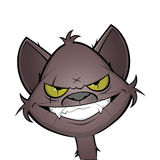 Evil grinning cartoon cat Royalty Free Stock Images