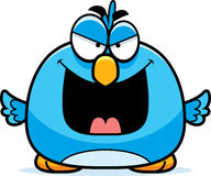Evil Little Bluebird Stock Image