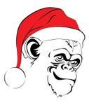 Evil monkey in Santa hats Stock Photography
