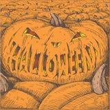 Evil pumpkin Stock Image