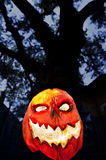Evil Pumpkin - Jack O Lantern stock photos