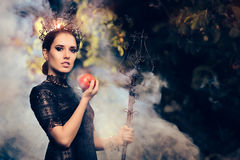 Evil Queen with Poisoned  Apple in Misty Forest. Beautiful dark princess using black magic spell Royalty Free Stock Image