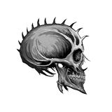 Evil skull. Angry skull graphic for use in design work or printing stock photography