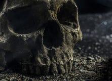 Evil skull. Skull on gravel with smoky background stock photography