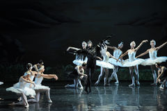 Evil strikes-The last scene of Swan Lake-ballet Swan Lake Royalty Free Stock Photography