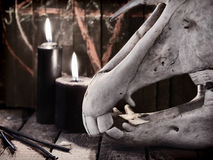 Evil toned background with horse skull and black candles. Mystic still life with scary occult objects, horror Halloween and black magick concept stock photography