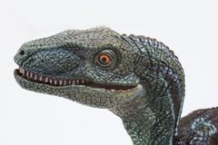 Evil velociraptor on white background. Ready to attack Stock Photo