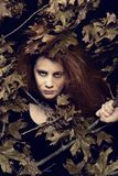 Evil witch with leaves and tree branches. Portrait of evil witch with leaves and tree branches royalty free stock image