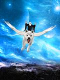 Evil Wizard, Flying White Wolf Royalty Free Stock Images