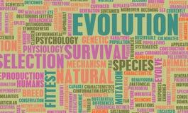 Evolução ilustração royalty free