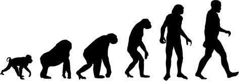 Evolução ilustração do vetor