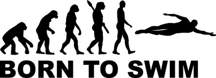Evolução da natação ilustração royalty free