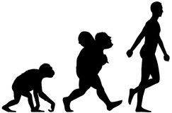 Evolução humana Fotografia de Stock Royalty Free