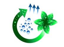 Evolução verde ilustração royalty free